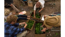 farmhands